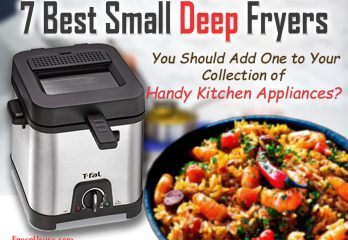 7 Best Small Deep Fryers 2019 | Get the Right Model for You