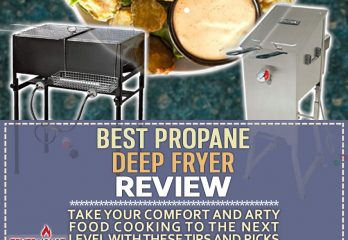5 Best Propane Deep Fryers Review | Get the Right Model for You