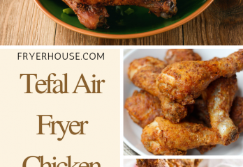 Tefal Air Fryer Chicken Drumstick Recipe | FryerHouse.com