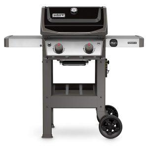 Weber 44010001 - Best 2-Burner Propane Grill