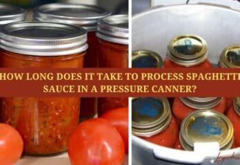 How Long Does It Take to Process Spaghetti Sauce in A Pressure Canner?